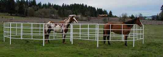 A set of two corrals 2 go connected for two horses and using the extra-tall corral panels